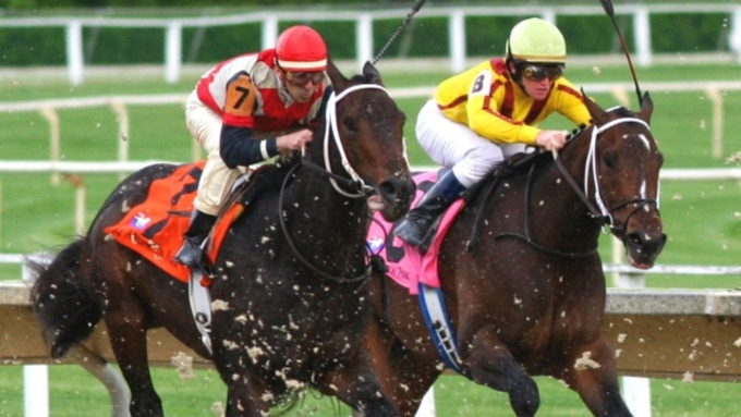 Конный спорт в Монако – развлечение настоящих аристократов